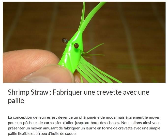 Fabriquer une crevette avec une paille