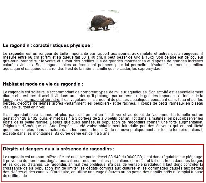 """LE RAGONDIN """"DEGATS ET DANGER"""""""