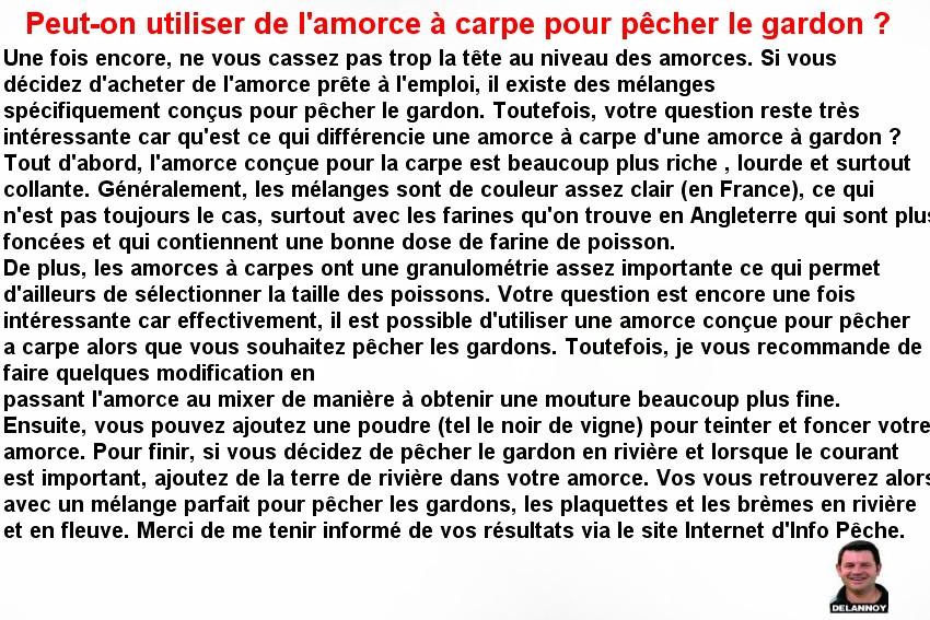 AMORCE CARPE POUR LE GARDON (2)