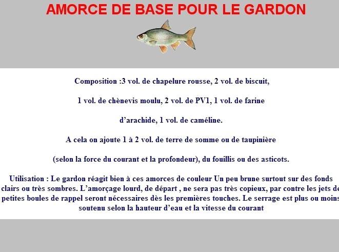 AMORCE DE BASE POUR LE GARDON