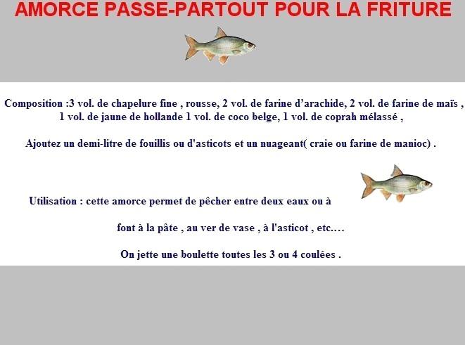AMORCE PASSE-PARTOUT POUR LA FRITURE