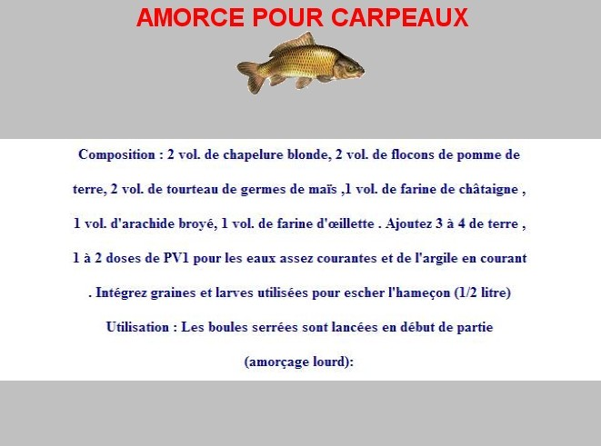 Amorces for Amorce maison pour carpe