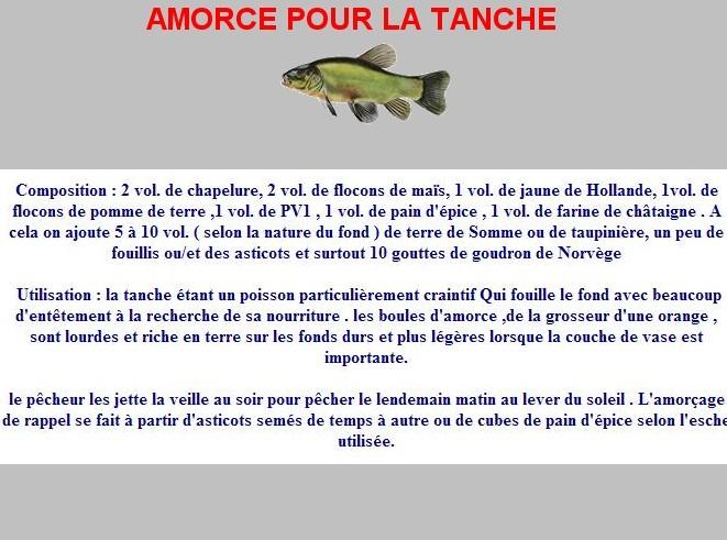 Amorce pour la tanche for Amorce maison pour gardon