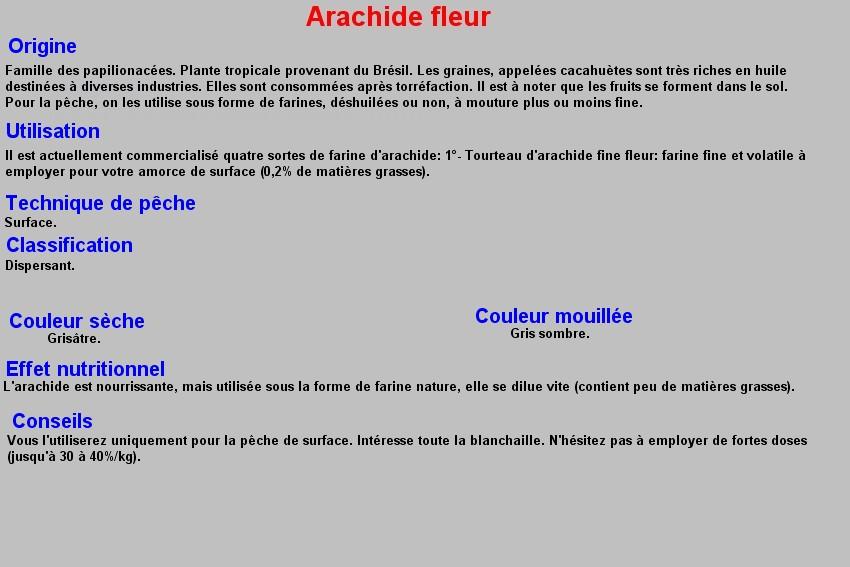 ARACHIDE FLEUR 5