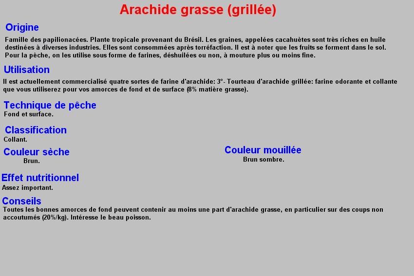 ARACHIDE GRASSE (GRILLEE) 6
