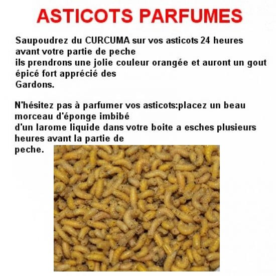 asticots-1