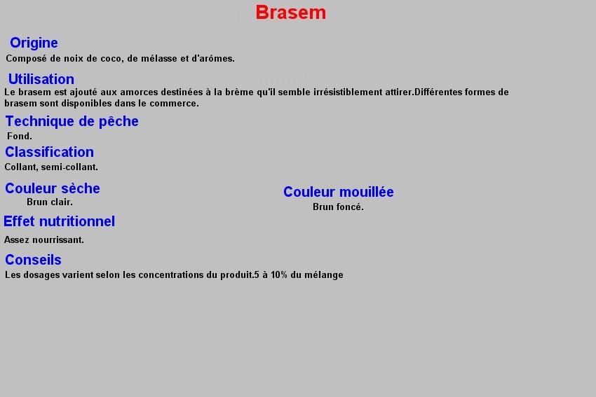 BRASEM 11