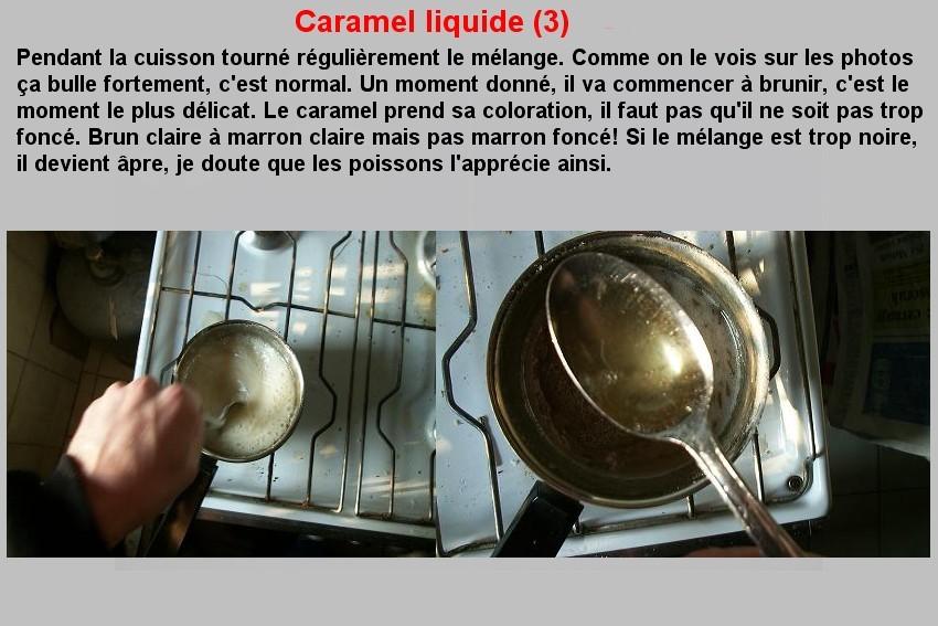 CARAMEL LIQUIDE (3)