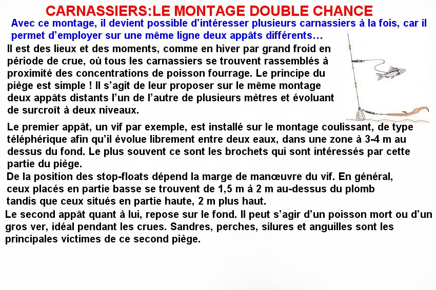 CARNASSIER LE MONTAGE DOUBLE CHANCE