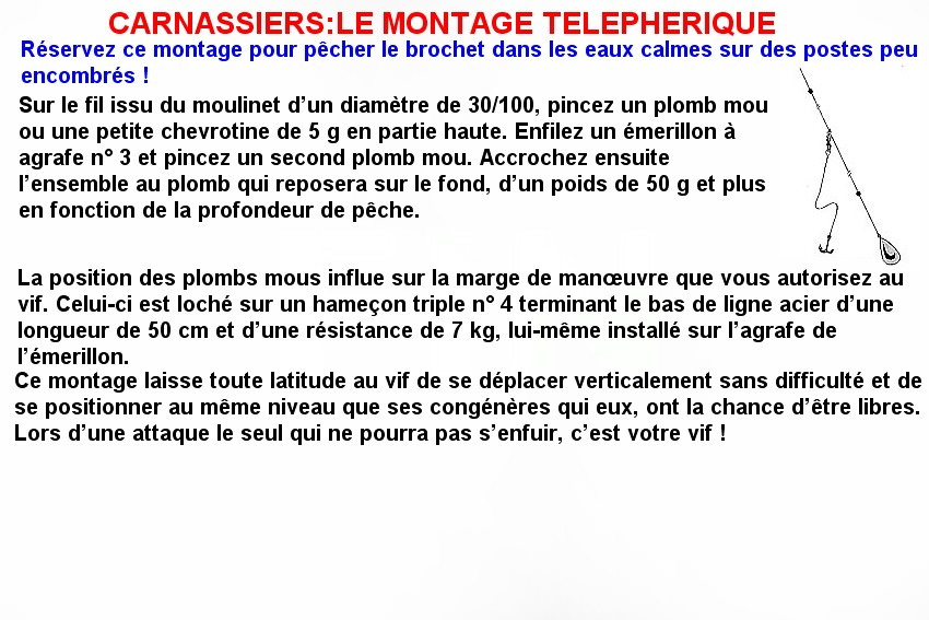 CARNASSIERS LE MONTAGE TELEPHERIQUE