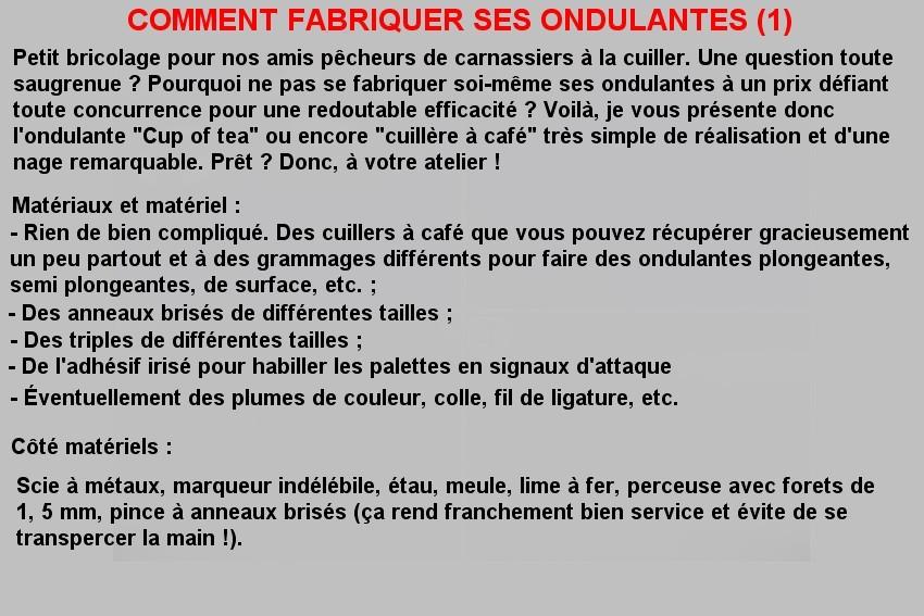 COMMENT FABRIQUER SES ONDULANTES (1)