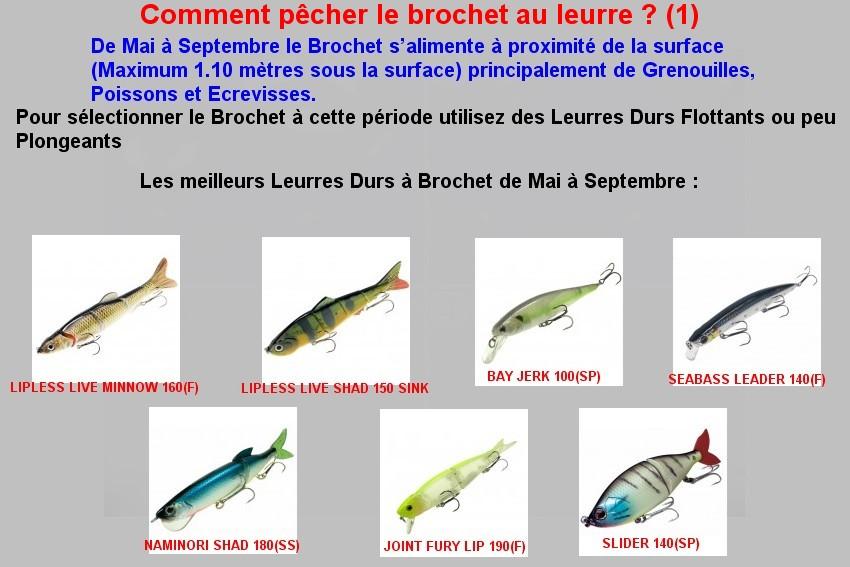 Comment pêcher le brochet au leurre (1)