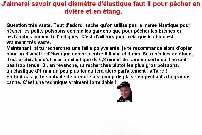 DEBUTER A LA GRANDE CANNE  ELASTIQUE (5)
