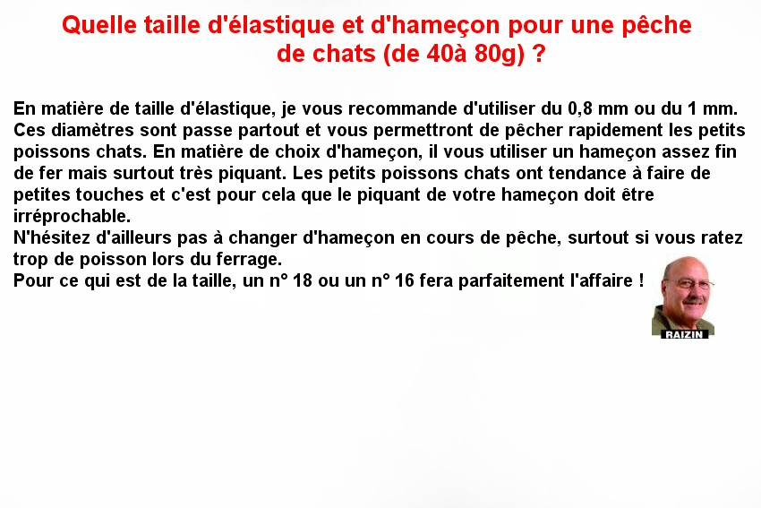 ELASTIQUE ET HAMECON POUR LE CHAT (7)