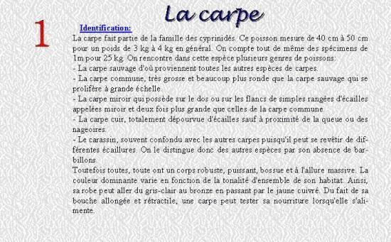 LA CARPE 1