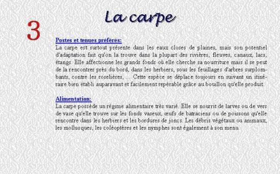 LA CARPE 3