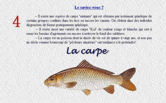 LA CARPE 4