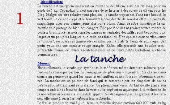 LA TANCHE 1