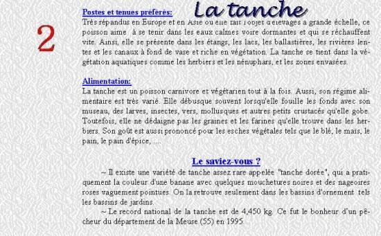 LA TANCHE 2