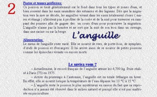 L'ANGUILLE 2