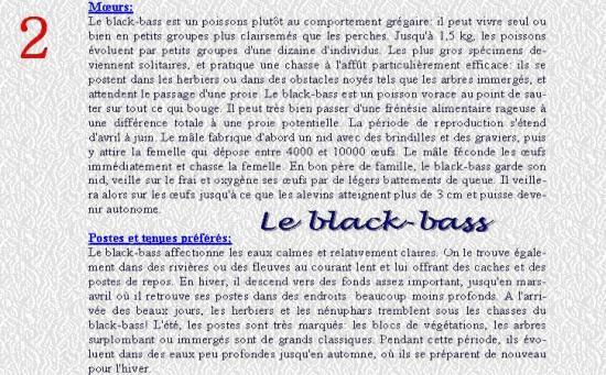 LE BLACK BASS 2