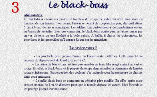 LE BLACK BASS 3