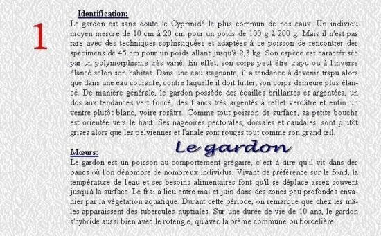LE GARDON 1