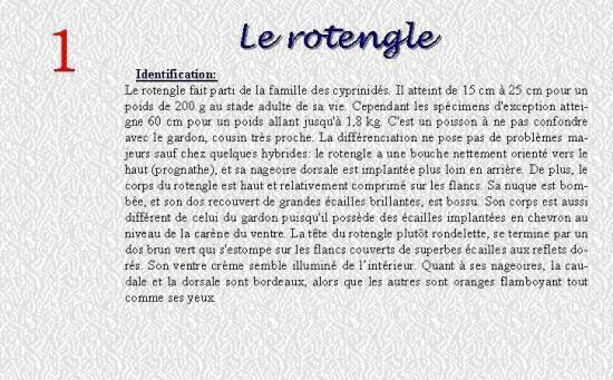 LE ROTENGLE 1