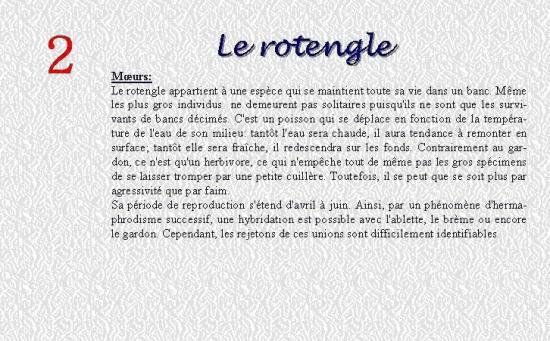 LE ROTENGLE 2
