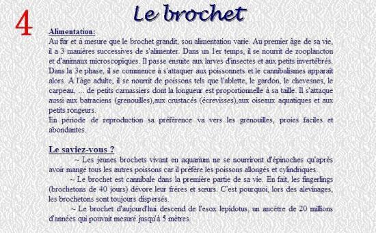 LE BROCHET 4