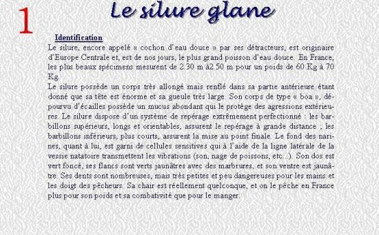 LE SILURE GLANE 1