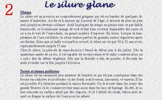 LE SILURE GLANE 2