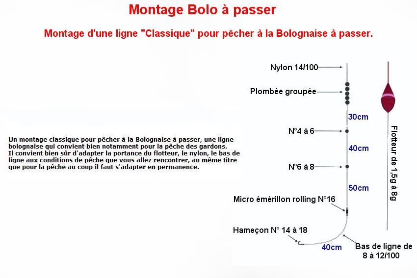 LA BOLOGNAISE (10)