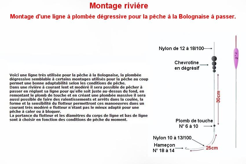 LA BOLOGNAISE (11)