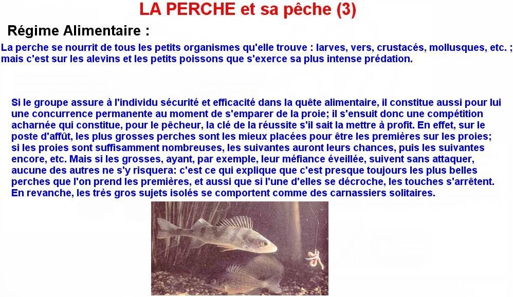LA PERCHE ET SA PECHE (3)
