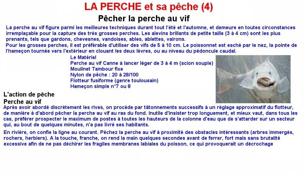 LA PERCHE ET SA PECHE (4)