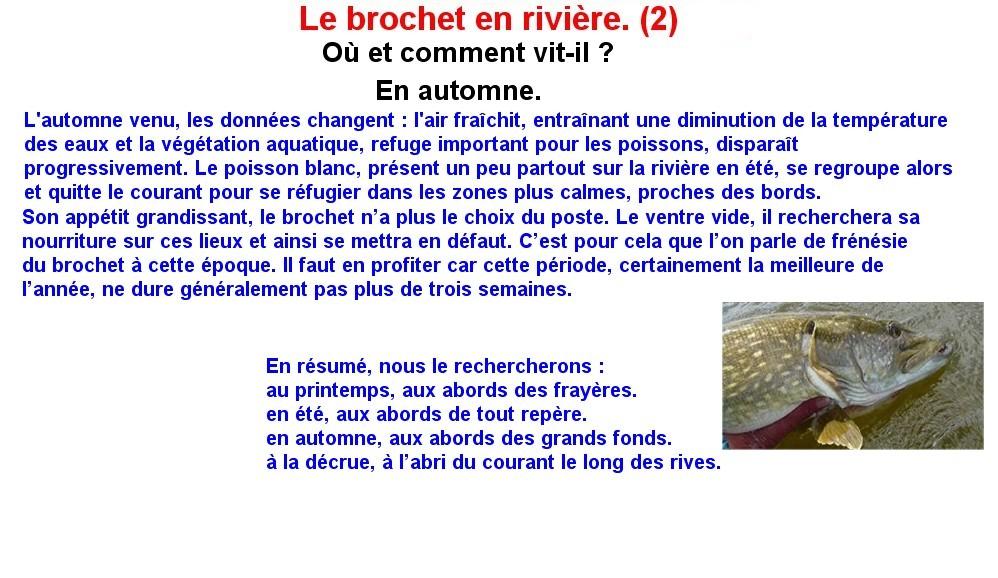 LE BROCHET EN RIVIERE (2)