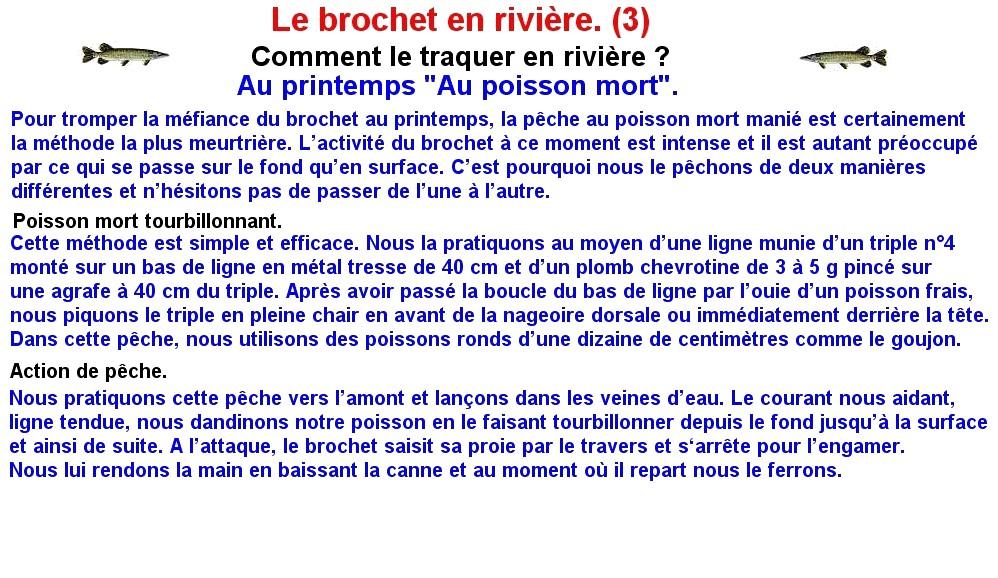 LE BROCHET EN RIVIERE (3)