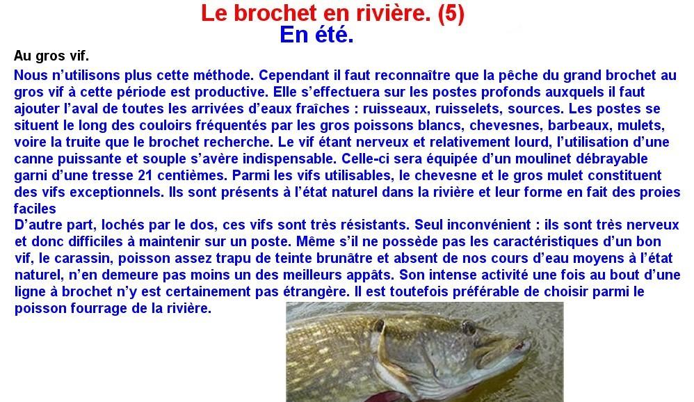 LE BROCHET EN RIVIERE (5)