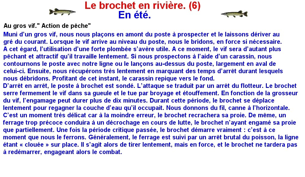 LE BROCHET EN RIVIERE (6)