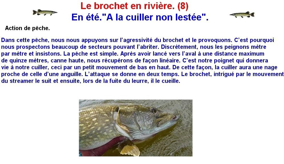 LE BROCHET EN RIVIERE (8)