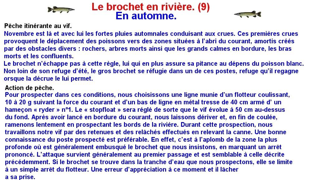 LE BROCHET EN RIVIERE