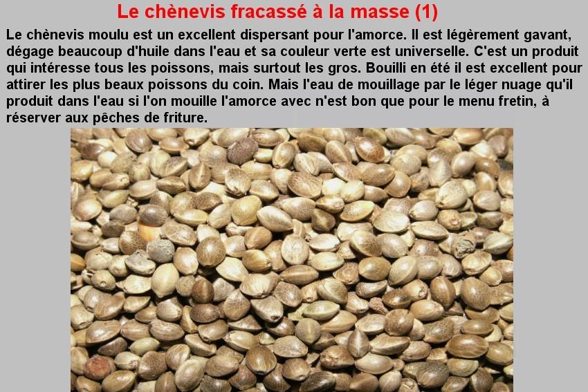 LE CHENEVIS FRACASSE A LA MASSE (1)