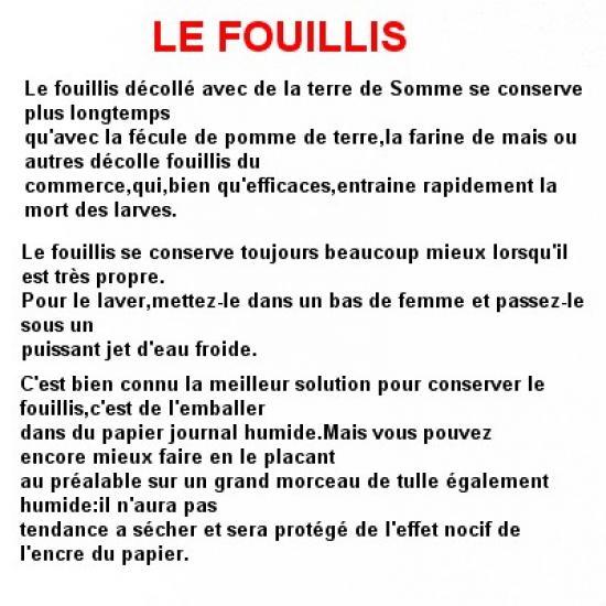 le-fouillis-2