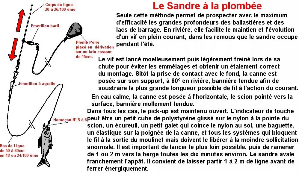 Le Sandre à la plombée (3)