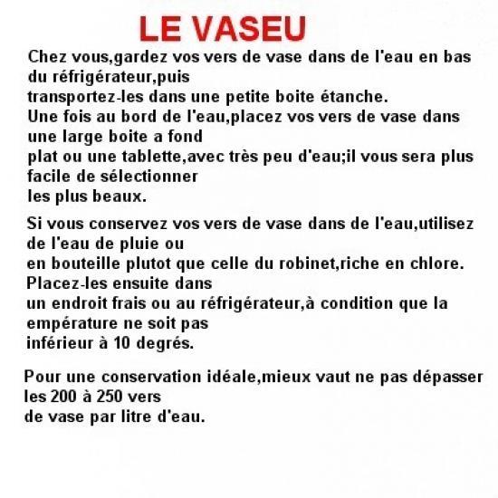 le-vaseu-1