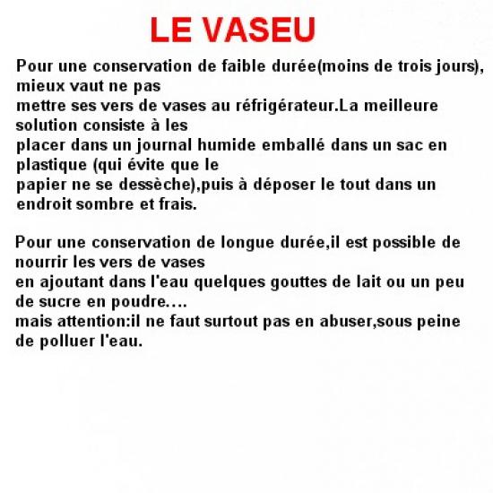 le-vaseu-2