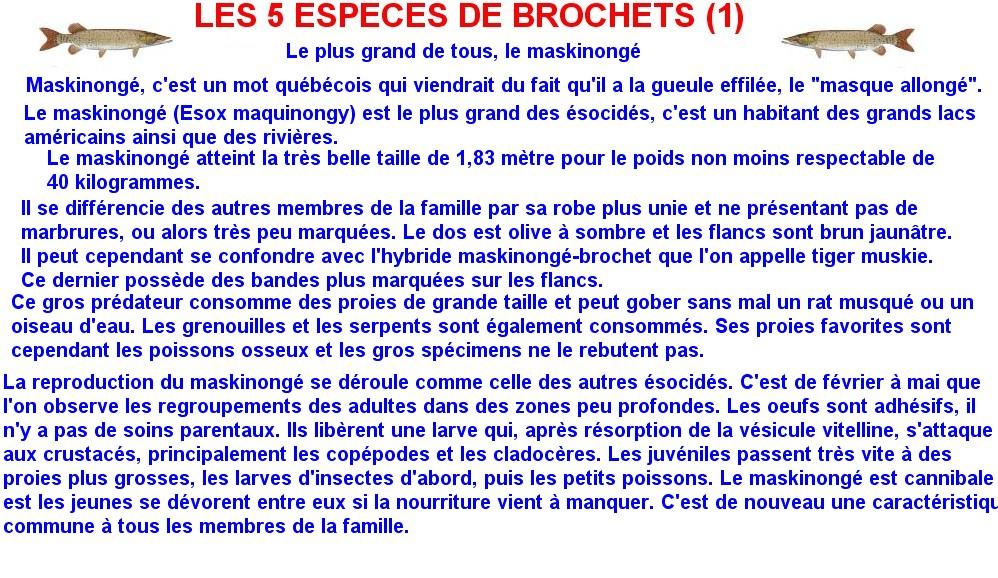 LES 5 ESPECES DE BROCHETS (1)