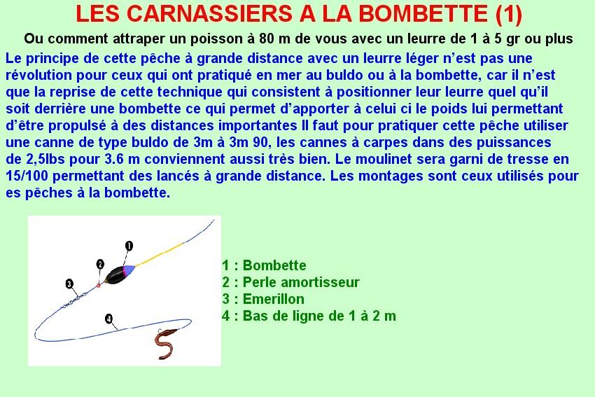 LES CARNASSIERS A LA BOMBETTE (1)