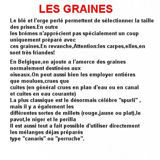 les-graines-1
